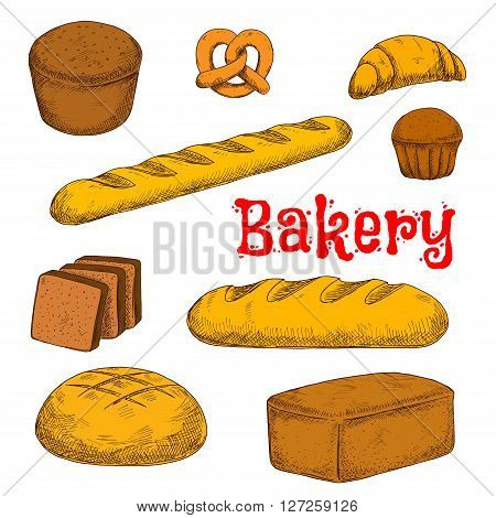 Flavorful rye, whole grain and wheat bread loaves, crispy french baguette and croissant, chocolate cupcake, toasts and sweet soft pretzel sketch icon. Colorful bakery and pastry products for healthy food design