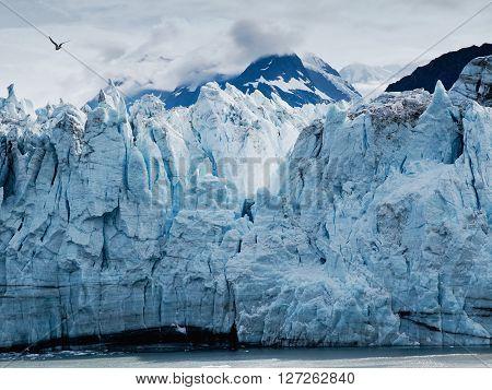 Margerie Glacier at Glacier bay national park in Southeast Alaska