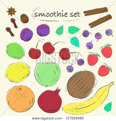Set of hand drawn fruit berries and spices. Vintage grungy sketch illustration. Apple plum mint blueberry banana lemon pomegranate coconut orange lime cinnamon all spice