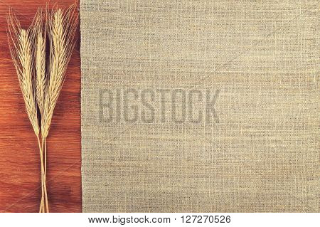 cloth and wheat ears background texture. Background with place for text cloth and wheat ears top view
