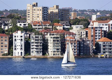 The yacht passing by North Sydney residential district (New South Wales Australia).
