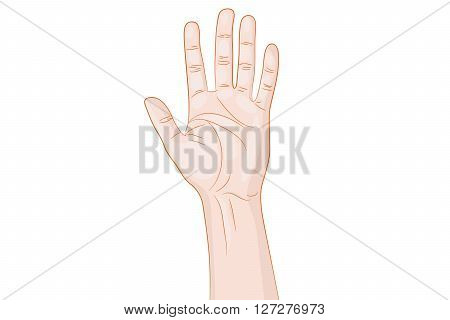 Greeting human Hand Gesture vector illustration white background