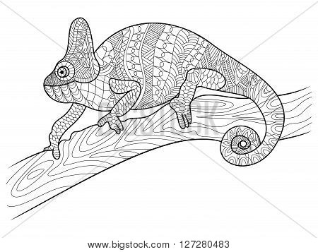 Chameleon animal coloring book for adults vector illustration. Zentangle style. Black and white lines. Lace pattern