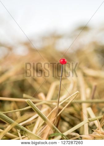needle in a haystack. saying for challenge in managemen