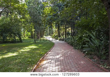 Paved Red Brick Walkway Leading Into Botanical Landscape