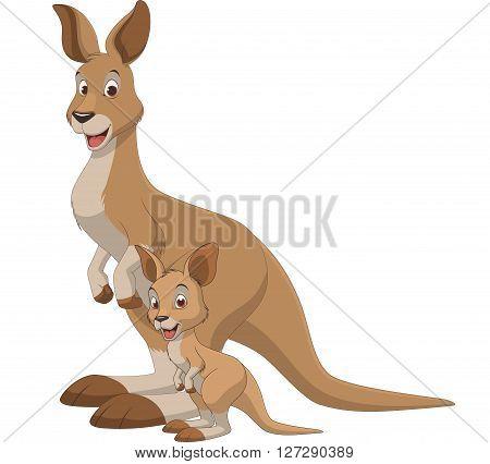 Vector illustration adult kangaroo and baby kangaroo on a white background