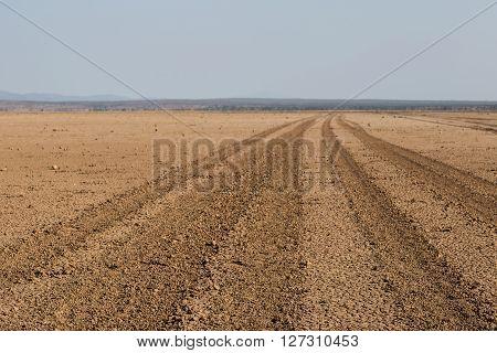 Road going through the Amboseli desert (aka