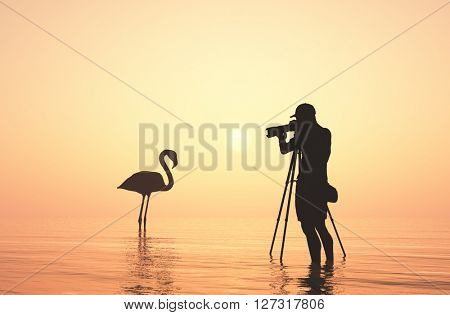 Silhouette of photographer and bird...3d render