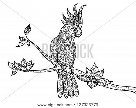 Cockatoo parrot bird coloring book for adults vector illustration. Zentangle style. Black and white lines. Lace pattern