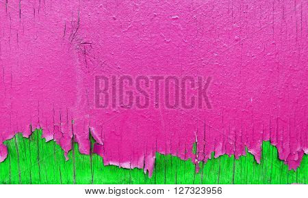 Peeling pink and green paint on wooden wall. Bright background with peeling paint.