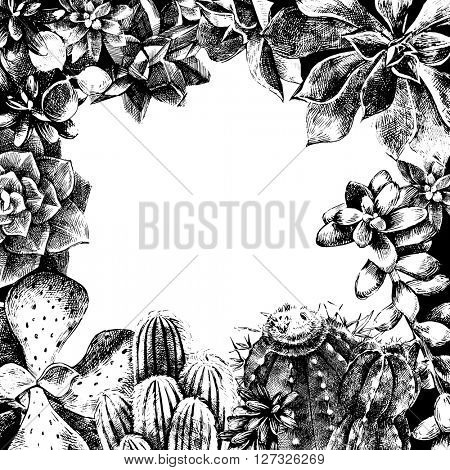 Hand drawn frame made with cactuses and succulents. Hand drawn illustration