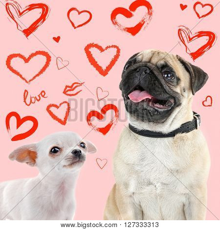 Two dogs together on color background with hearts