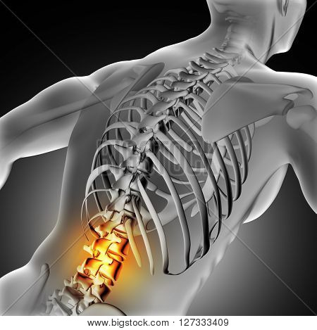 3D render of a medical image of a male figure with spine highlighted