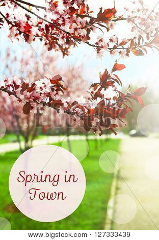 Spring in town text on spring park background