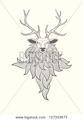 Deer. Vector graphic illustration with deer isolated on white background