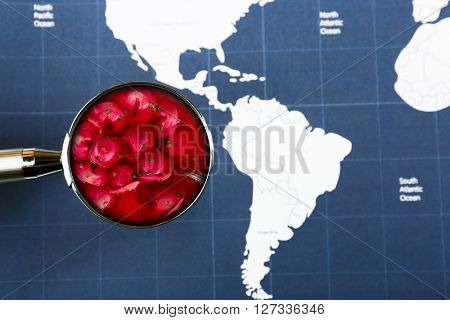 Popular food concept. Looking for red borscht with dumplings on world map