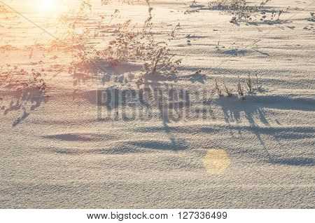 snow-covered field in winter, snow and field, snow and Christmas atmosphere