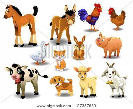 farm animals on a white background