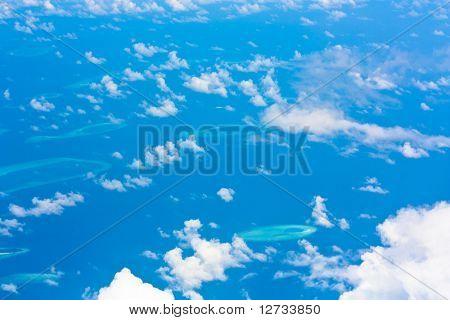 Concept View Blue