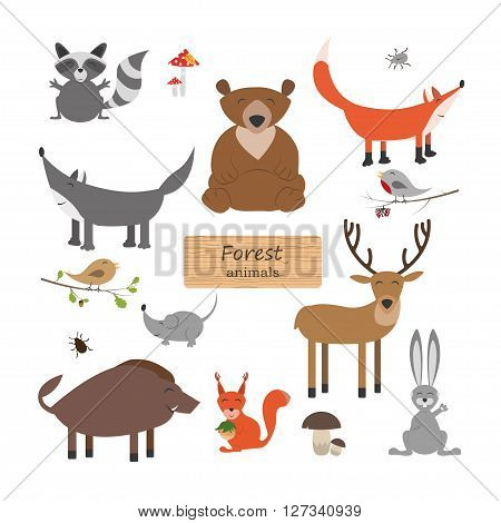 Forest animals in cartoon style on white background. Forest animals set. Wildlife collection. Vector illustration