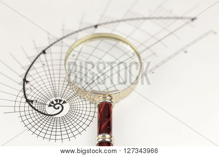magnifying glass & drawing of the golden section