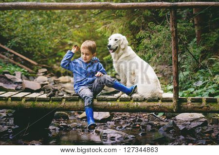 Little boy sitting on the wooden bridge with golden retriever and is throwing down stones into the river