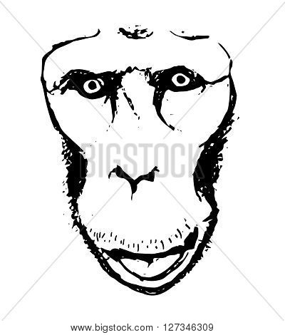 A graphic image of the monkey the gorilla look. Abstraction on a white background vector illustration.