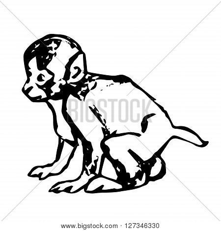 Figure-abstraction a little monkey. The graphic image of a baby monkey. Vector illustration on a white background.