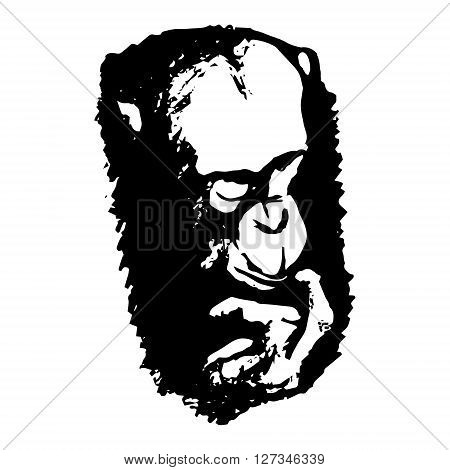 Graphic image of a monkey's head on a white background. Abstract drawing - monkey thinks vector illustration