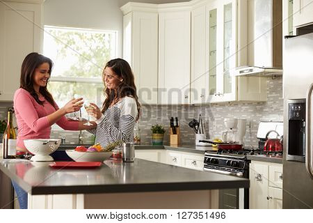 Female gay couple make a toast as they prepare a meal