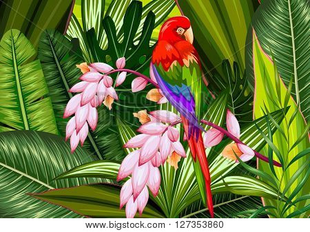Exotic tropical background with colorful macaw