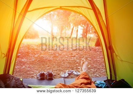 tent in the forest. view from insight of tent