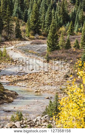 White water Mineral Creek in Colorado, USA during the fall