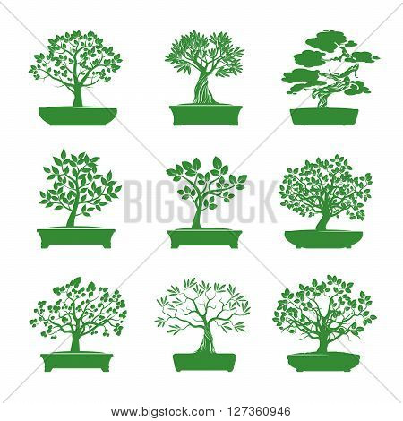 Set of Green Bonsai Trees. Vector Graphic Element.