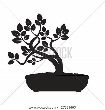 Illustration of Black Bonsai Tree. Vector Graphic Element.