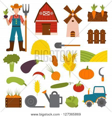 Farm organic food agriculture in village elements vegetables, fruits, hay, farm building, animals, farmer, tractor, tools vector. Vegetables farm fresh nature healthy garden and vegetables farm.