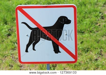 sign walking of dogs prohibited on the background of grass