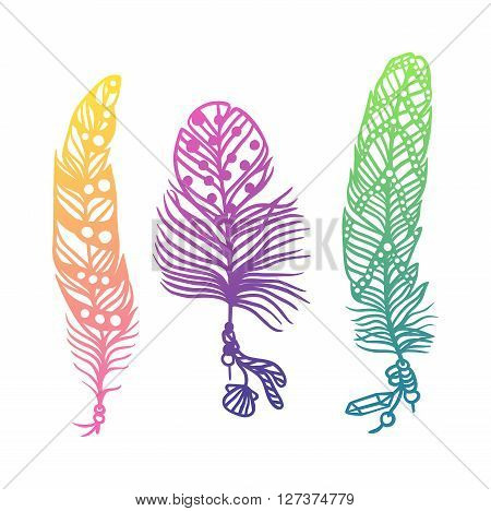 Tribal ethnic colorful feathers vector illustration. Creative art concept with colorful feathers. Colorful feather bird decoration and bird tribal hand drawn colorful feather. Drawing quill feather.
