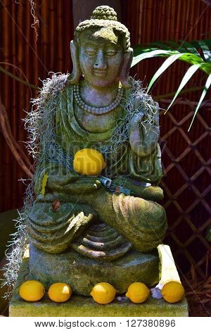 Buddha statue with lemons and money for good luck and karma  ** Note: Visible grain at 100%, best at smaller sizes