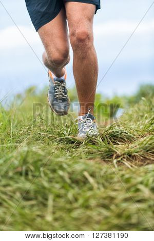 Running shoes and legs of runner jogging outdoors in green grass trail path. Fit athlete man working out cardio in nature. Lower body crop for feet, thighs and knees health and pain problems concept.