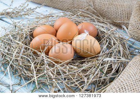 Brown eggs in hay eggs in nest hen eggs. Sackcloth background