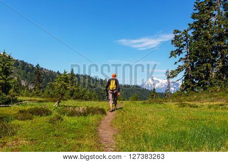 Backpacker in summer mountains