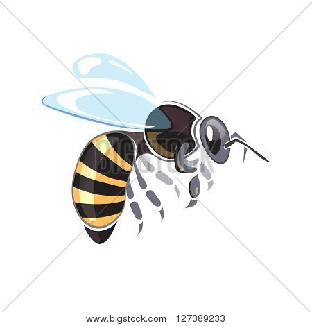 Apiary vector illustrations. Apiary symbols. Bee isolate on white background