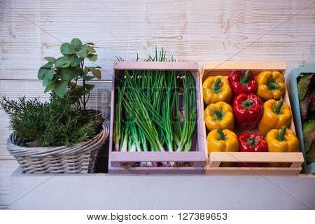 View of variuos vegetables inside the wooden boxes