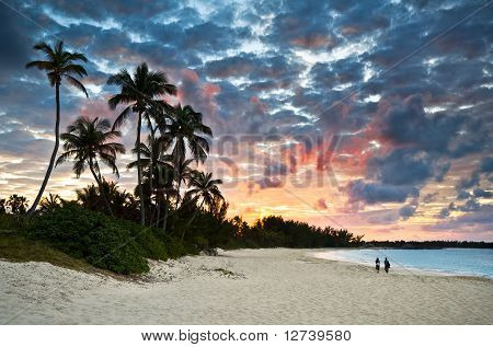 Tropical Caribbean White Sand Beach