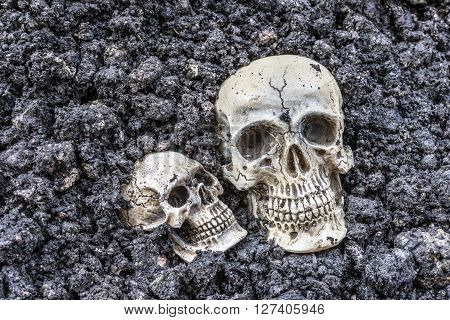 Two human skull half buried in soil creepy horror concept