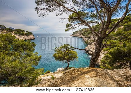 National Park Calanques on the Mediterranean coast. The picturesque gulf - Calanque with turquoise water and rocky steep banks
