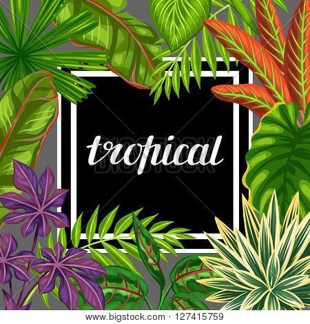 Tropical paradise card with stylized plants and leaves. Image for advertising booklets, banners, flayers.