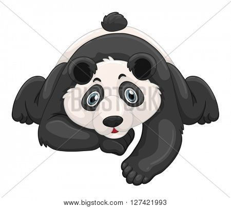 Cute panda crawling on the ground illustration