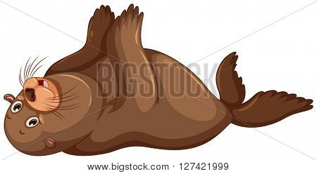 Sea lion flapping hands illustration
